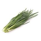 期間限定收割 北海道韭菜 100g (北海道産)