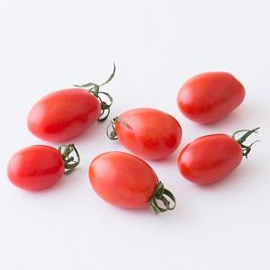 酸味が少なくお子様に人気 ミニトマト120g(アイコ 熊本県産 大家さん他)