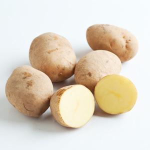 春天更甜美 北海黄金馬鈴薯 4-10個 400g (北海道産)