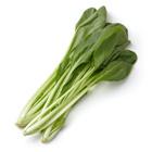 適合多種料理 有機栽培小松菜 150g (島根縣産)