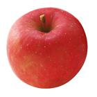 【大Size】中村先生的富士蘋果 2個 600g (長野県産)