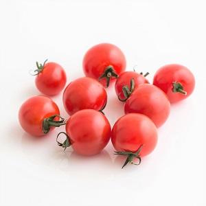 Cheryy Tomato 120g (Hokkaido)