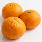 濃厚香甜 夏見香橙 2-7個 350g (鹿児島縣産)