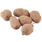 粉糯食感 北星馬鈴薯 3~12個 450g (北海道産)