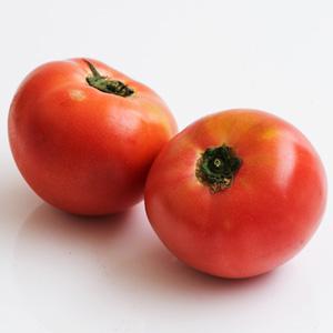 北海道の大地が育んだ トマト2-6玉(400g 北海道産 村井さん他)