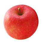 【大Size】中村先生的富士蘋果 1個 300g (長野縣産)