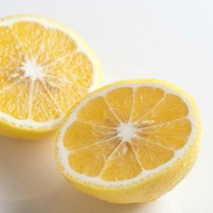 晴香柑橘 2個 300g (愛媛県産)