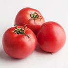 【N-1番茄】番茄鮮香濃厚 日向番茄 2~6個 300g(宮崎県産)