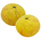 Amanatsu Mandarin Orange 400g (Ehime)