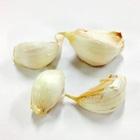 Cloves of Garlic 30g (Aomori)
