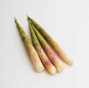 Gassan Bamboo Shoot 110g (Yamagata)