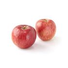 今年首次登場 小玉津輕蘋果 2個 360g (長野縣産)