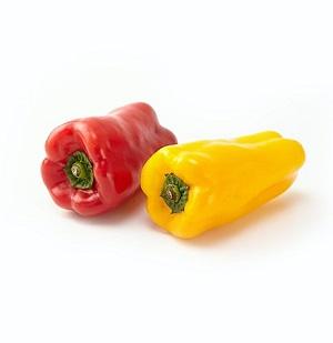 厚肉像水果的口感 彩椒 100g (大分県或熊本県産)