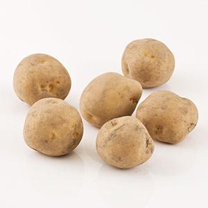 粉糯口感 男爵馬鈴薯 3-7個 450g (北海道産)