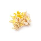 香氣獨特 黃金平菇 60g (長野縣産)