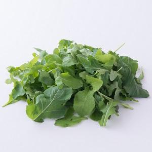 獨特香草味道 芝麻菜苗 30g (埼玉縣産)