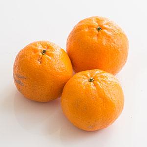 果肉柔軟甜美 椪柑 3-5個 400g (高知県産)