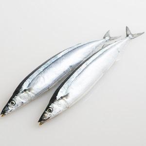 當造新鮮肥美 北海道秋刀魚 2條 250g (北海道製)