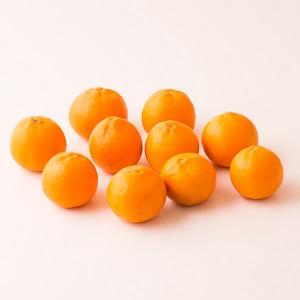威脅日本蜜柑地位?! 比吉斯小香橙 10個 500g (加州産)