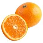 抵擋不了的香甜 清見柑橘 2個 400g (愛媛縣産)