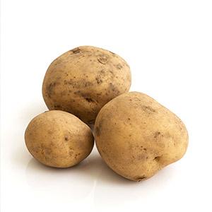 Organic Potato 500g (Kumamoto)