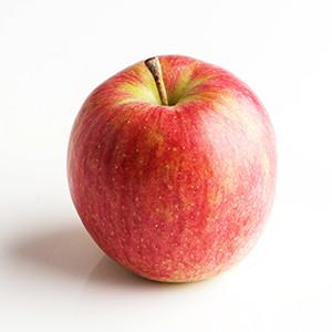 又甜又Juicy 中村先生的信濃蜜糖蘋果 1個 300g (長野縣産)