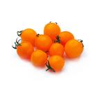 糖果般的外表 橙色車厘茄 120g (愛知縣產)