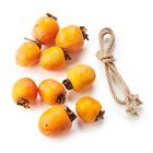 自製柿乾 和歌山柿組合 4-5個 800g (和歌山縣産)