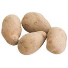 爛煮咖哩一流 五月皇后馬鈴薯 3-5個 400g (北海道産)