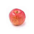 日本蘋果著名産地 富士蘋果 1個 200g (青森縣産)