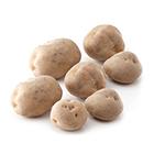 大容量系列 北星馬鈴薯 7-10個 1kg (北海道產)