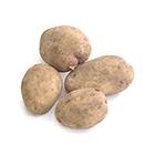 燘煮炸薯一流 晴香馬鈴薯 3-6個 360g (北海道産)
