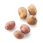 選出您的最愛 馬鈴薯試食比拼組合 400g (北海道產)