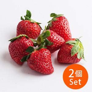 【7%OFF】静岡縣代表品種 紅面頰士多啤梨 4-10粒 150g ×2個組合(静岡縣産)