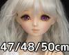 47/48/50cmボディ対応